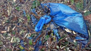 plastic bags, plastic pollution