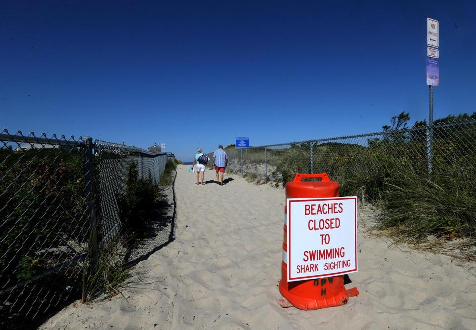 Plymouth officials closed public beaches after a shark sighting last year.