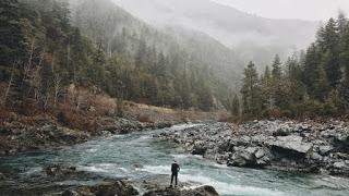 stream, river, fog, rocks by river