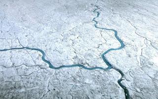 greenland, greenland ice sheet, algae and ice sheets