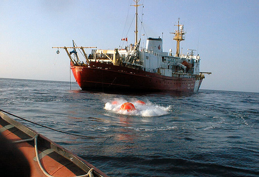PHOTO: Loud seismic air gun blasts could damage sea life and fisheries in the Atlantic. Photo credit: Natural Resources Canada.