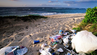 marine debris, ocean pollution, garbage on the beach, Mokuleia Beach, Oahu Hawaii