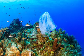 plastic bag ban Chile