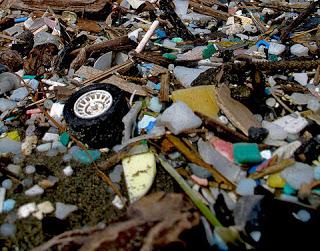 plastic pollution, single-use plastic ban