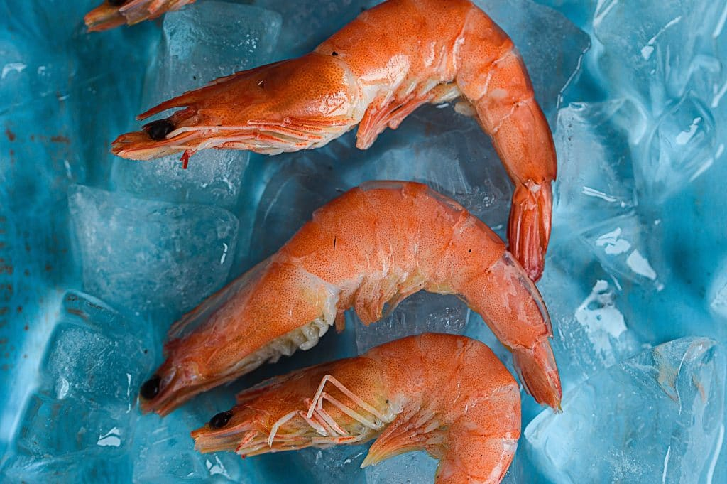 Canada Trails Other Countries in Tackling Seafood Fraud
